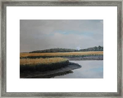 Point Comfort Framed Print