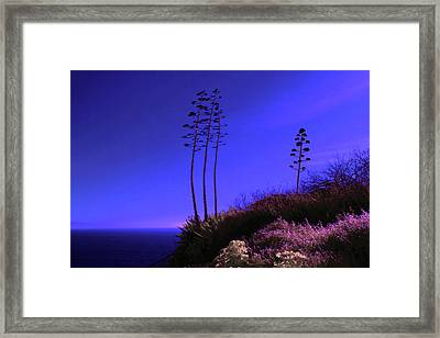 Framed Print featuring the photograph Point Fermin In Infrared by Randall Nyhof