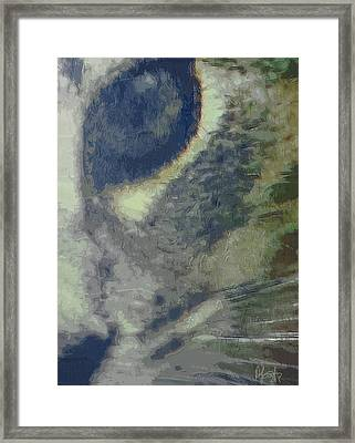 Point Five Framed Print by Holly Ethan