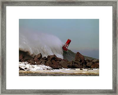 Point Judith Buoy Framed Print
