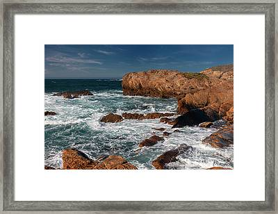 Point Lobos 1 Framed Print