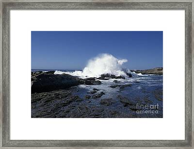 Point Lobos Seascape 2 Framed Print