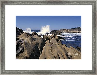 Point Lobos Seascape 3 Framed Print