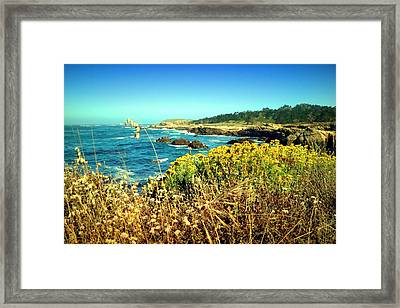 Point Lobos Shore In Bloom Framed Print by Joyce Dickens