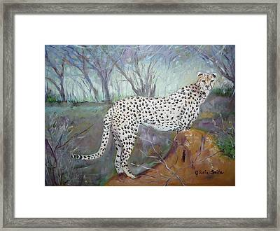 Point Of View  Framed Print