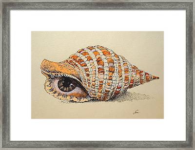 Point Of View Framed Print by Olga Smirnova