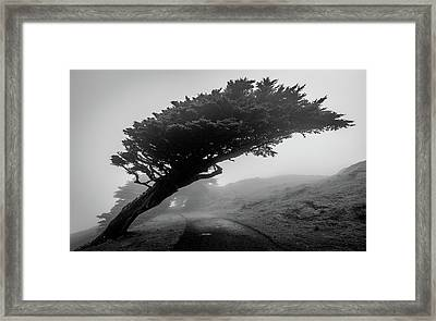 Point Reyes Fog Black And White Framed Print