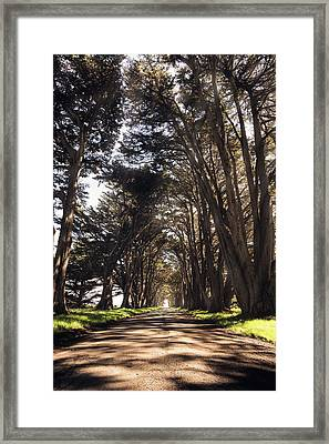 Point Reyes Light Rays Framed Print by Gray Mitchell