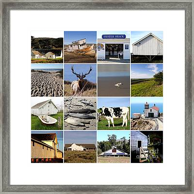 Point Reyes National Seashore 20150102 Framed Print
