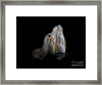 Pointe Shoes And Dog Tags3 Framed Print by Laurianna Taylor