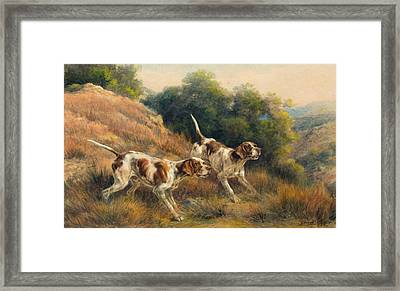 Pointers Framed Print by Celestial Images