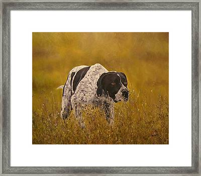 Pointer...to The Point....... Framed Print by Erna Goudbeek