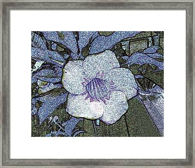 Pointilized Flower Framed Print by Merton Allen