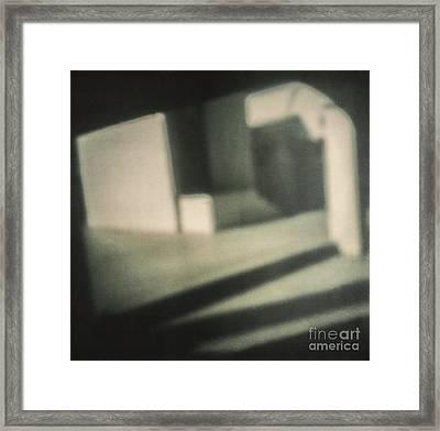 Pola #221 Framed Print