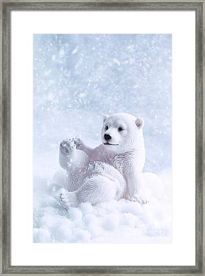Polar Bear Figure Framed Print by Amanda Elwell