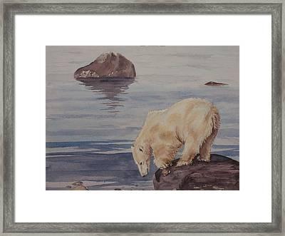Polar Bear Fishing Framed Print by Debbie Homewood