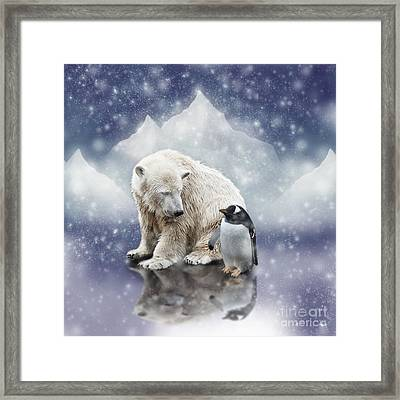 Polar Bear Meets Penguin Framed Print
