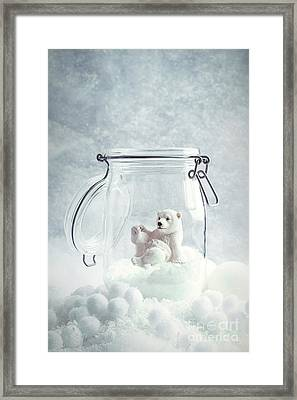 Polar Bear Snowglobe Framed Print