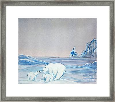 Polar Ice Framed Print