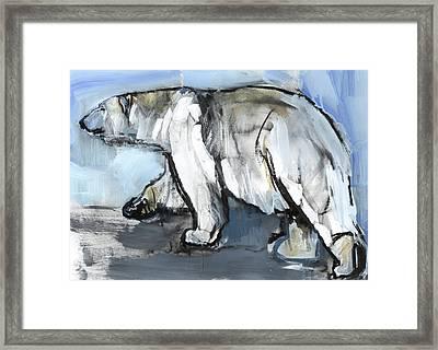 Polar Framed Print by Mark Adlington
