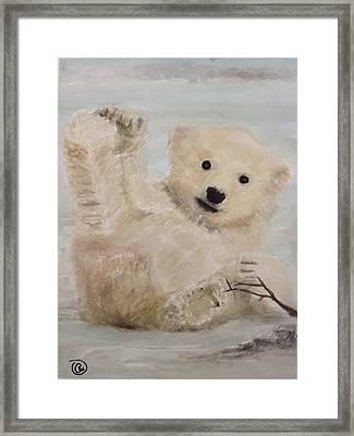 Polar Slide Framed Print by Annie Poitras