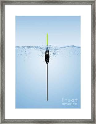 Pole Float Framed Print