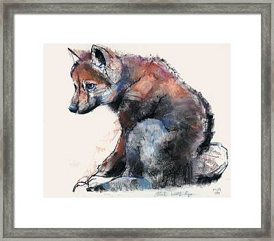 Polish Wolf Pup Framed Print