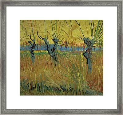 Pollarded Willows And Setting Sun Framed Print