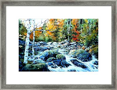Polliwog Clearing Framed Print by Hanne Lore Koehler