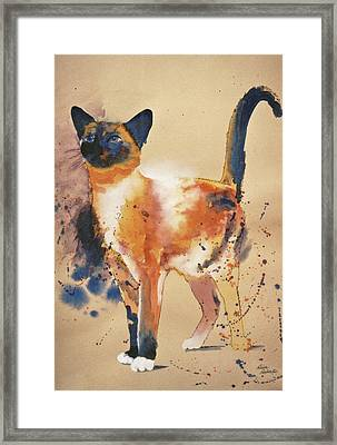 Pollock's Cat Framed Print by Eve Riser Roberts