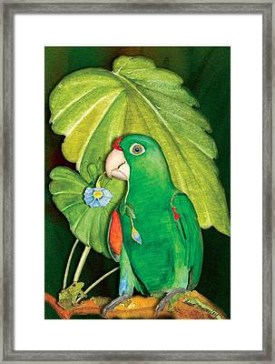 Framed Print featuring the painting Polly Wants A Flower by Anne Beverley-Stamps