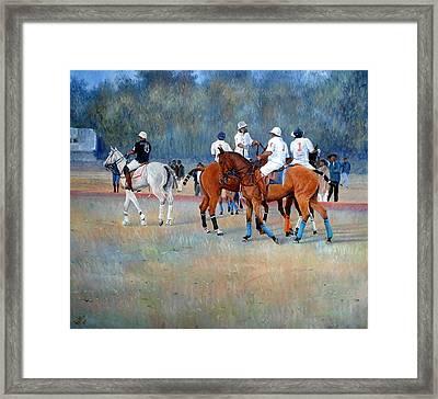Polo Horses Painting Framed Print by Abid Khan