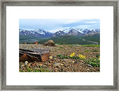 Polychrome Pass, Denali Framed Print by Zawhaus Photography