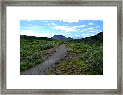 Polychrome Pass Trail, Denali Framed Print by Zawhaus Photography