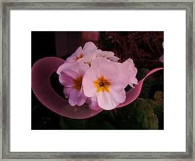 Polypink Framed Print