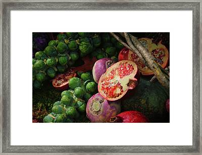 Pomegranate And Sprouts Framed Print by Rick Berk