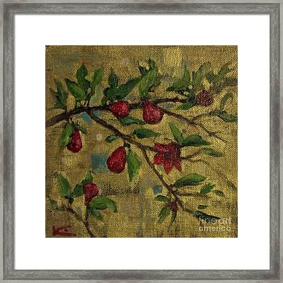 Pomegranate Blossoms On Gold  Framed Print