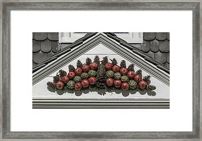 Pomegranate Swag Framed Print