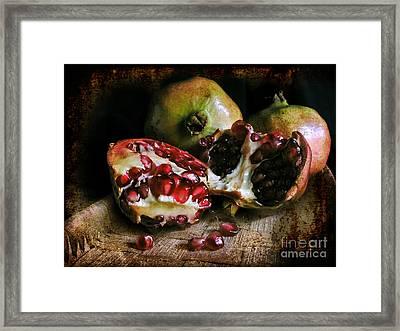 Pomegranates N.2 Framed Print
