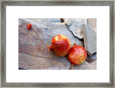 Framed Print featuring the photograph Pomegranates On Stone by Cindy Garber Iverson
