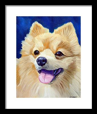 Pomeranian Framed Prints