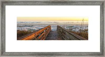 Ponce De Leon Inlet Beach Path Framed Print