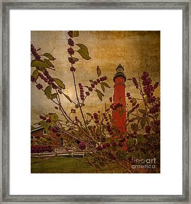Ponce De Leon Inlet Lighthouse 6851 Framed Print