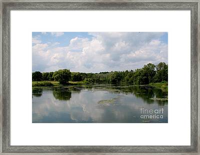 Pond At Beaver Island State Park In New York Framed Print by Rose Santuci-Sofranko