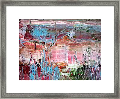 Pond At Cattana Wetlands Framed Print