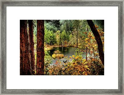 Pond At Golden Or. Framed Print