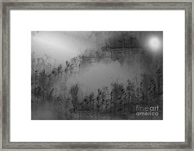Pond By Moonlight Framed Print by John Krakora