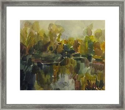 Pond Framed Print by Darya Gavroff