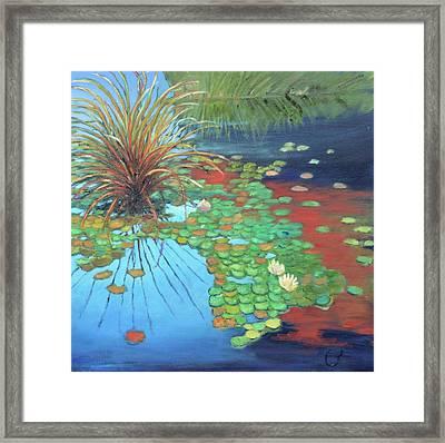Pond Framed Print by Gary Coleman