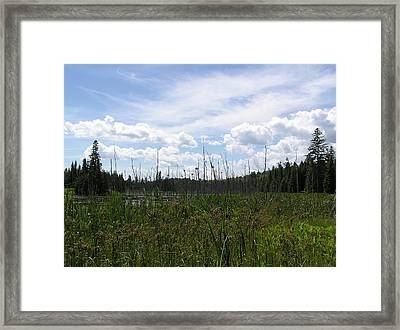 Pond In A Distance Framed Print by Richard Mitchell